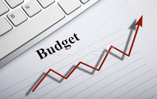 document with title budget and diagram Stock photo © mizar_21984