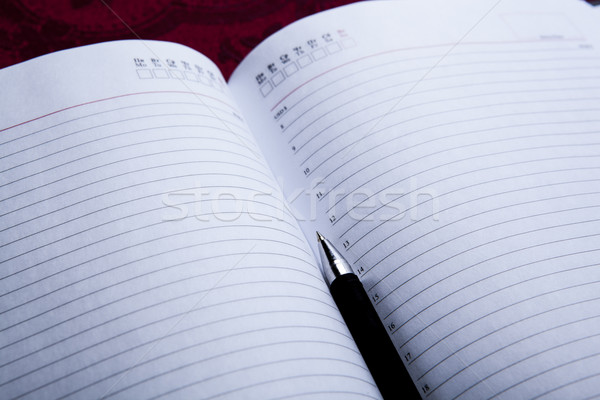 diary with black pen Stock photo © mizar_21984