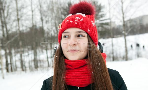 Egy lány tél ruházat mosolyog fiatal lány nő Stock fotó © mizar_21984