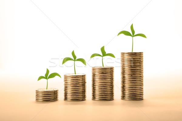 érmék gyártmány pénz közelkép fehér pénz Stock fotó © mizar_21984