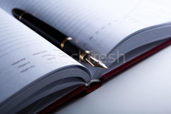Dagboek vulpen witte pen notebook Stockfoto © mizar_21984