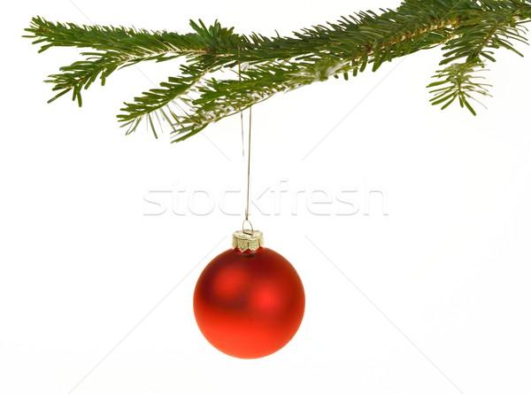 赤 クリスマス 装飾 支店 絞首刑 松 ストックフォト © mobi68