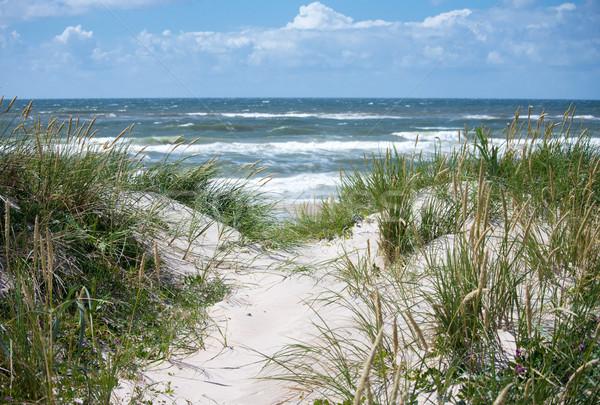 Mar norte costa playa agua hierba Foto stock © mobi68