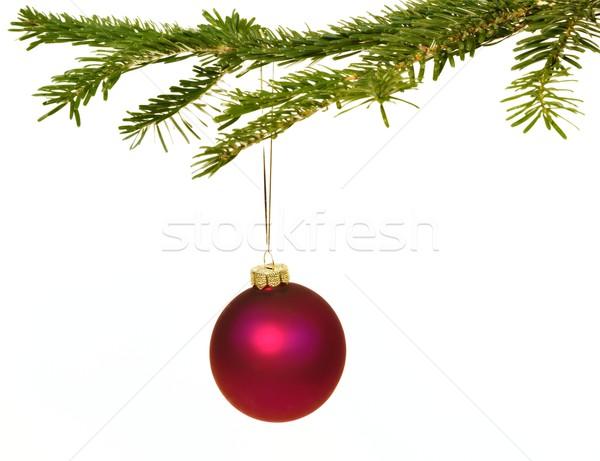 Oscuro rojo Navidad decoraciones rama colgante Foto stock © mobi68