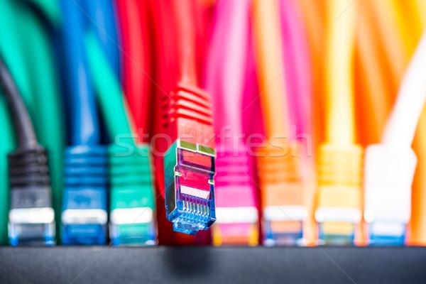 Stock fotó: Hálózat · kábelek · színes · macska · narancs · zöld