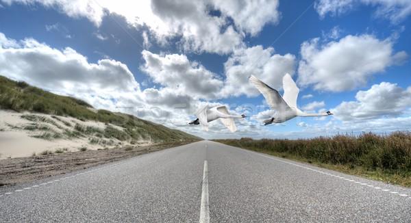 Vuelo dos silenciar volar carretera Foto stock © mobi68