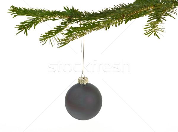 Oscuro gris Navidad decoraciones rama colgante Foto stock © mobi68