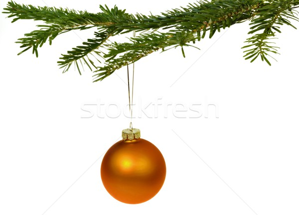 Oranje christmas decoraties tak opknoping pine Stockfoto © mobi68