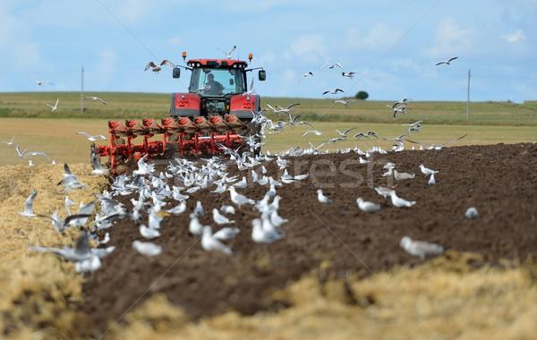 Traktör gökyüzü toprak düşmek tarım arazi Stok fotoğraf © mobi68
