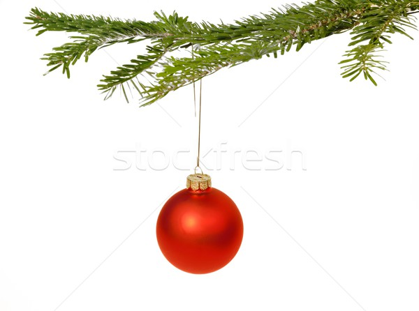 Stock photo: Red Christmas decorations on a branch