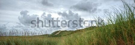 Abandonado hierba mar arena nube solitario Foto stock © mobi68