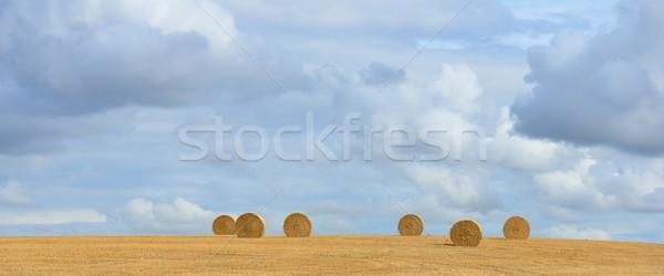 Paja rodar rural idilio naturaleza Foto stock © mobi68