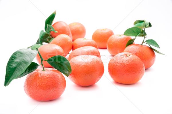 Frescos verde fondo naranja hojas rojo Foto stock © mobi68