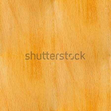 Beech - seamless tileable texture Stock photo © mobi68