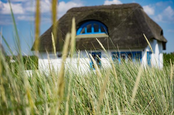 Casa cielo hierba sol verde azul Foto stock © mobi68