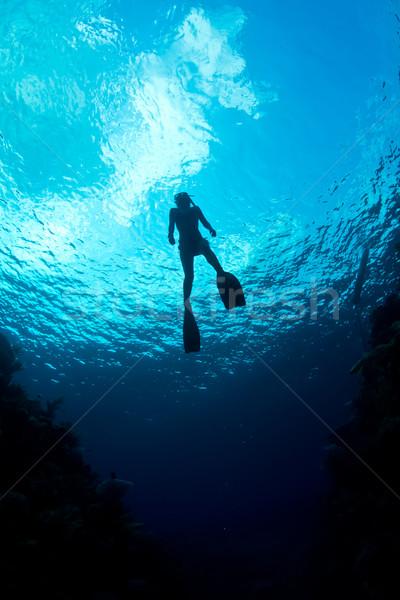 Caribbean kristal oceaan Stockfoto © MojoJojoFoto