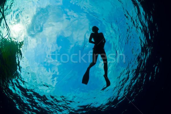 силуэта Привлекательная женщина Подводное плавание Карибы женщину Сток-фото © MojoJojoFoto