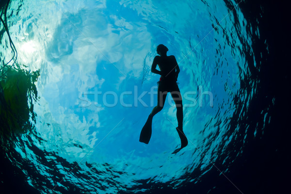 Silhouette of an attractive female snorkeler Stock photo © MojoJojoFoto