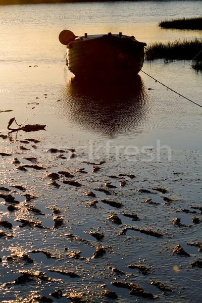 Tôt le matin vieux bois matin paysage Photo stock © MojoJojoFoto