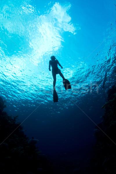 Caribbean Waters Stock photo © MojoJojoFoto