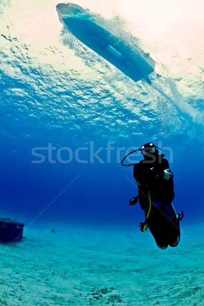 Bateau trafic Mexique jeunes Homme plongeur Photo stock © MojoJojoFoto