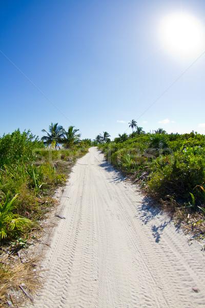 Route nulle part plage autoroute île Photo stock © MojoJojoFoto