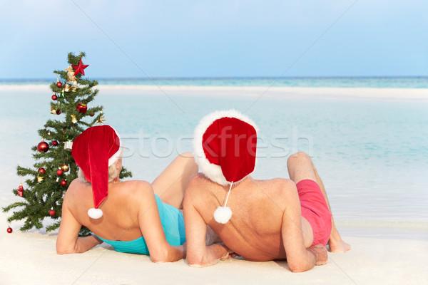 Seduta spiaggia albero di natale amore Foto d'archivio © monkey_business