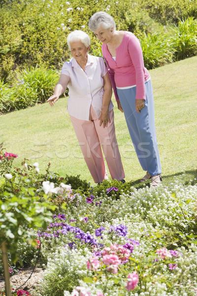 Senior women in garden Stock photo © monkey_business