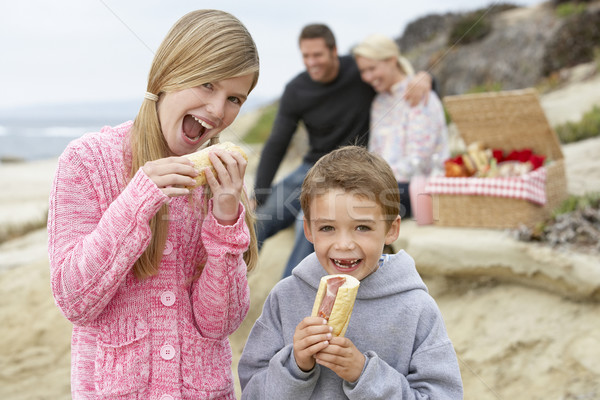 Stockfoto: Familie · dining · strand · vrouw · voedsel