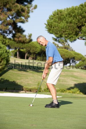 Senior femminile golfista campo da golf up verde Foto d'archivio © monkey_business