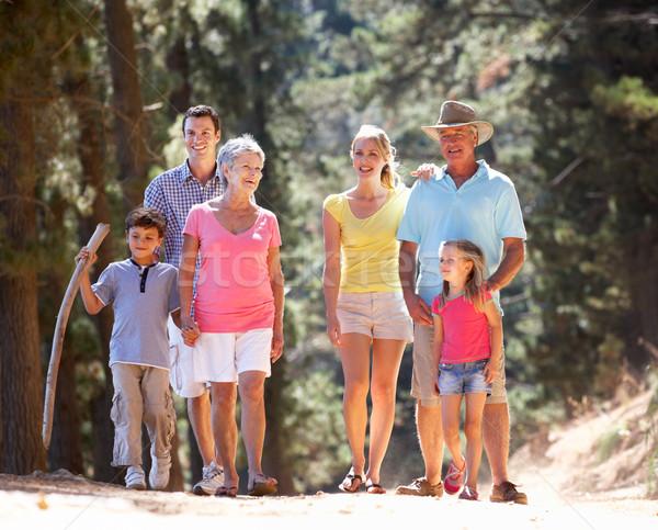 Geração família país andar mulher crianças Foto stock © monkey_business