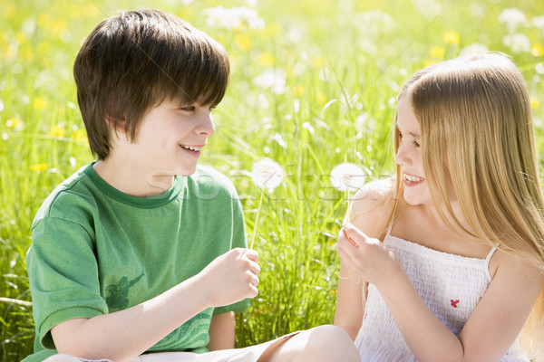 Two young children sitting outdoors holding dandelion heads smil Stock photo © monkey_business