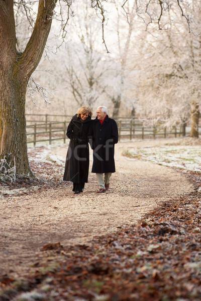 Idős pár tél séta fagyos tájkép férfi Stock fotó © monkey_business