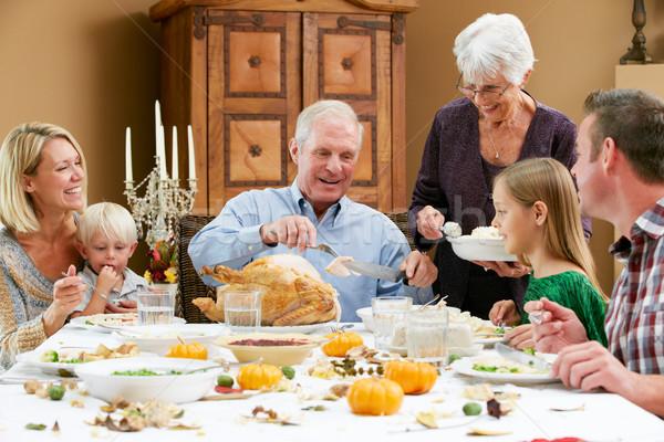 Többgenerációs család ünnepel hálaadás család lány férfi Stock fotó © monkey_business