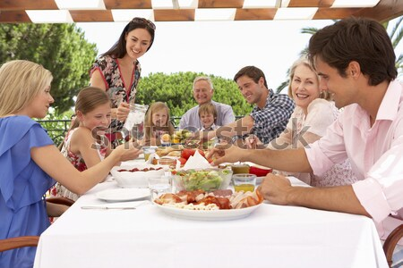 Multi Generation Family Having Outdoor Barbeque Stock photo © monkey_business