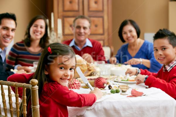 慶祝 聖誕節 餐 家庭 女孩 商業照片 © monkey_business
