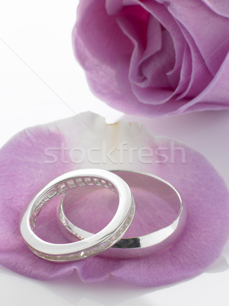 Silver Wedding Rings Resting On Rose Petals Stock photo © monkey_business