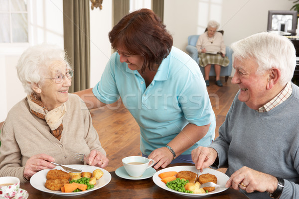 Senior Couple Being Served Meal By Carer Stock photo © monkey_business