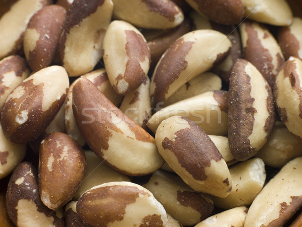 Brazil Nuts Stock photo © monkey_business