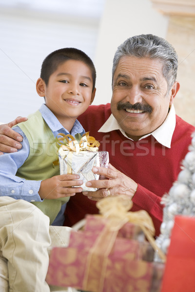 Boy Surprising Father With Christmas Present Stock photo © monkey_business