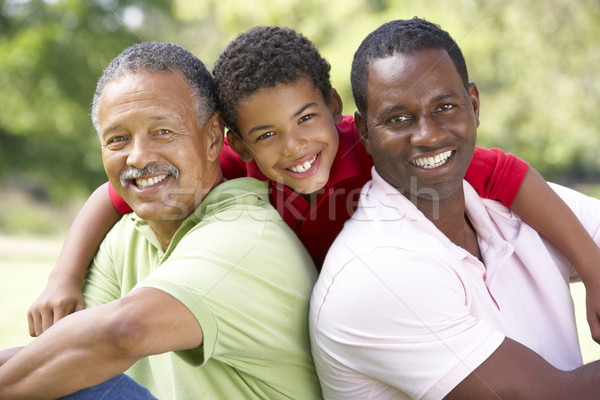 Grandfather With Son And Grandson In Park Stock photo © monkey_business