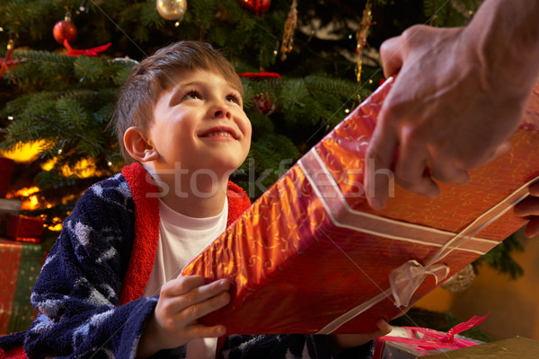 Young Boy Receiving Christmas Present In Front Of Tree Stock photo © monkey_business