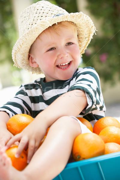 Garçon séance brouette oranges heureux enfant Photo stock © monkey_business