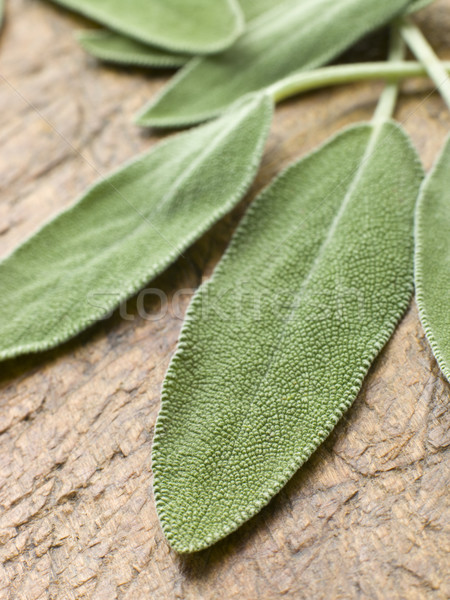 Sage Leaves On Chopping Board Stock photo © monkey_business