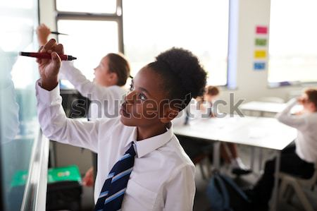 IT teacher demonstrating in class Stock photo © monkey_business