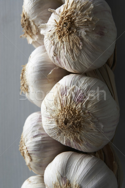 Garlic Cloves Hanging From String Stock photo © monkey_business
