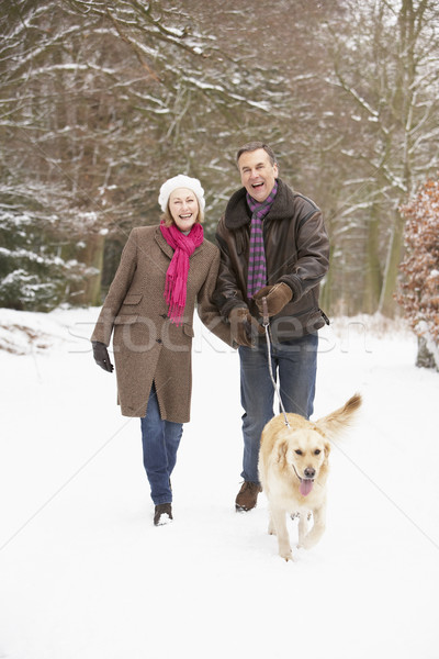 Senior Couple Walking Dog Through Snowy Woodland Stock photo © monkey_business
