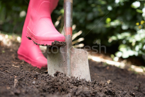 Femme jardin travail personne sol boue Photo stock © monkey_business