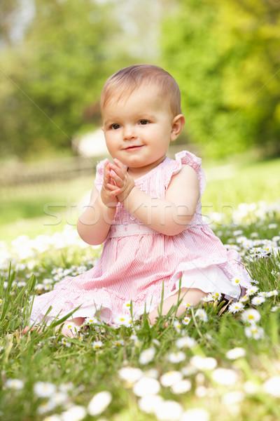 Baby Girl In Summer Dress Sitting In Field Stock photo © monkey_business