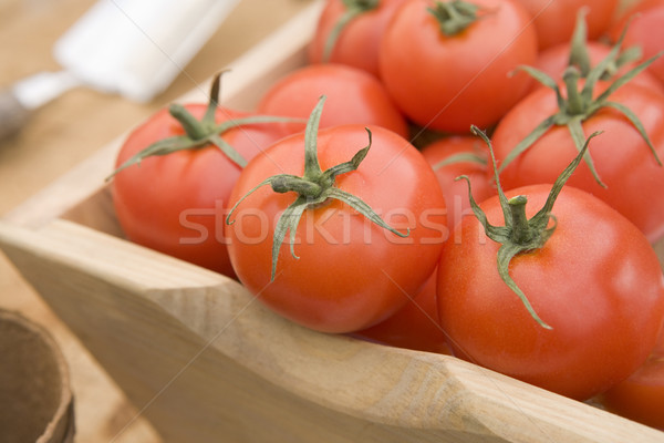 Red Tomatoes In A Wooden Trug Stock photo © monkey_business
